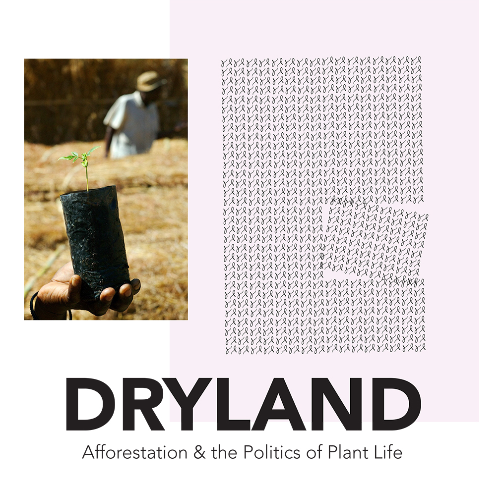 DRYLAND BOOK COVER