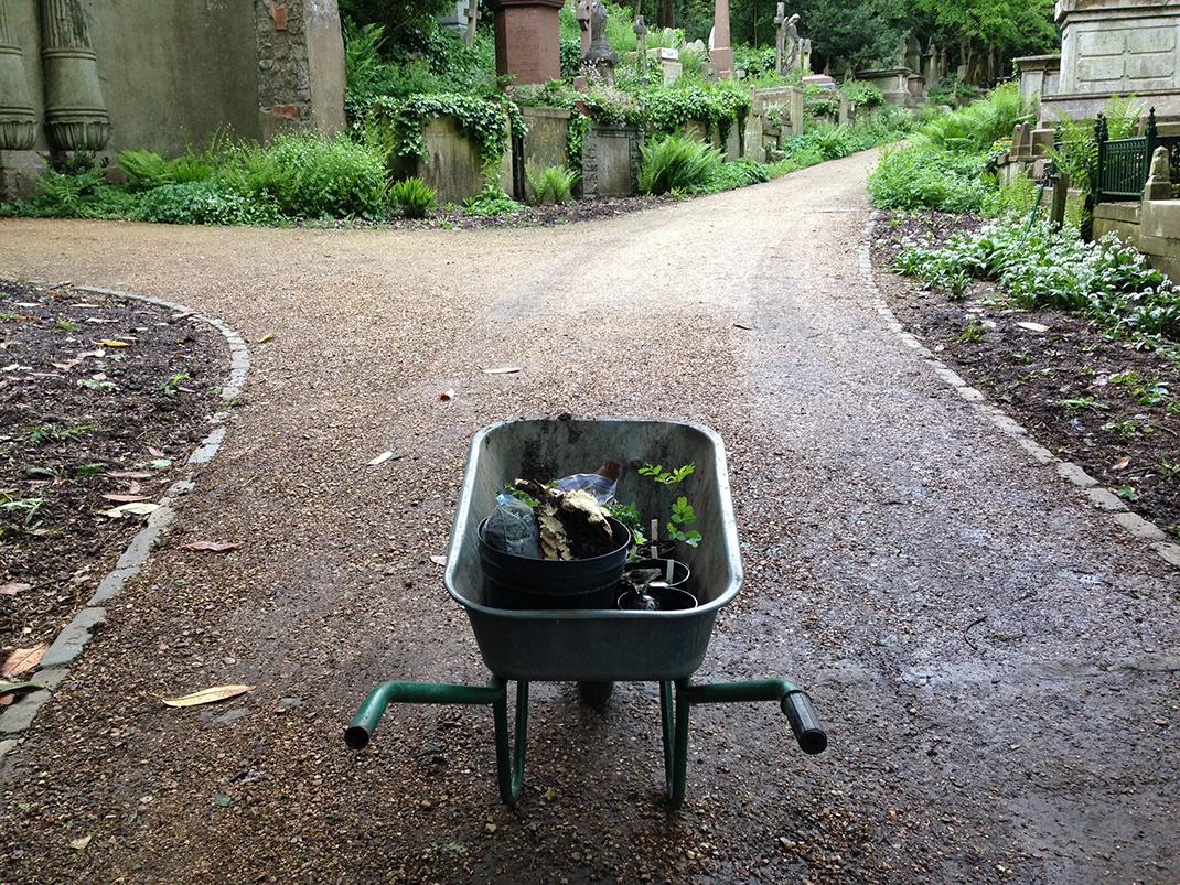 Highgate Cemetery 116